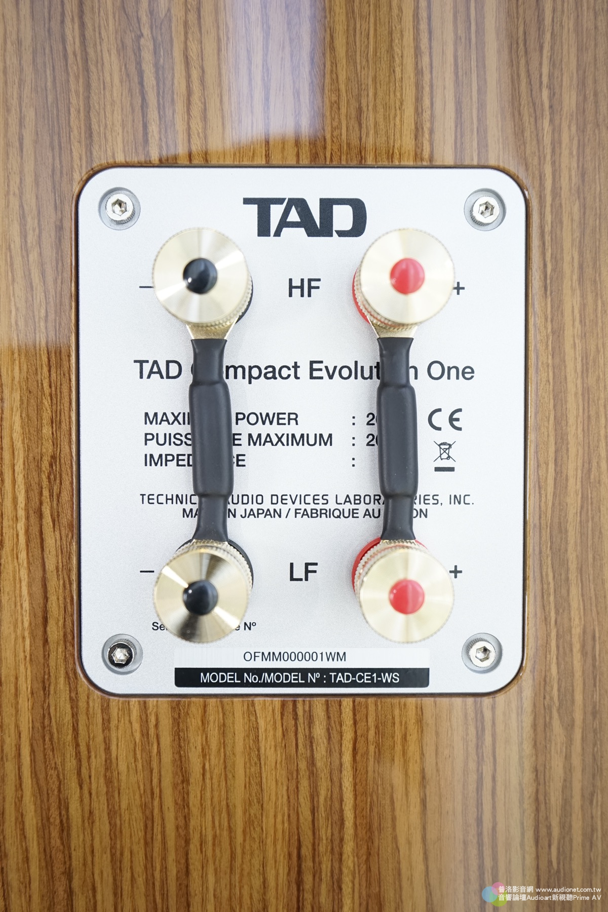 先鋒 TAD Compact Evolution One,甜爽100分